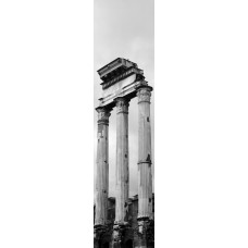 Foro Romano Rome Italië - wandposter