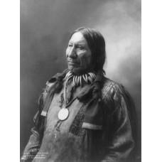 American Horse - 1900 - fotoprint