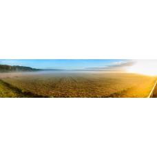 Bellheim Duitsland - panoramische fotoprint