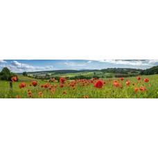 Berglandschap AF - panoramische fotoprint