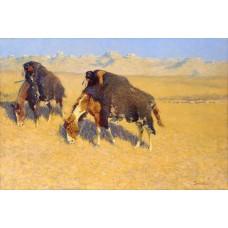 Indianen op bisonjacht - Frederic Remington - 1908