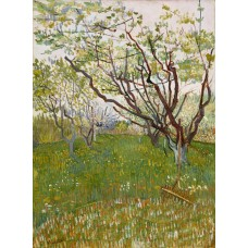 Bloeiende boomgaard - Vincent van Gogh - 1888