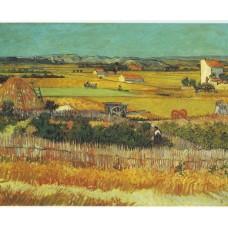 De Oogst - Van Gogh - 1888